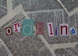 Etlivsomordblind får penge til at hjælpe ordblinde